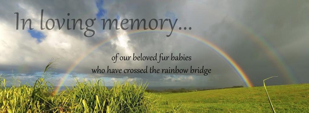 in memory 2